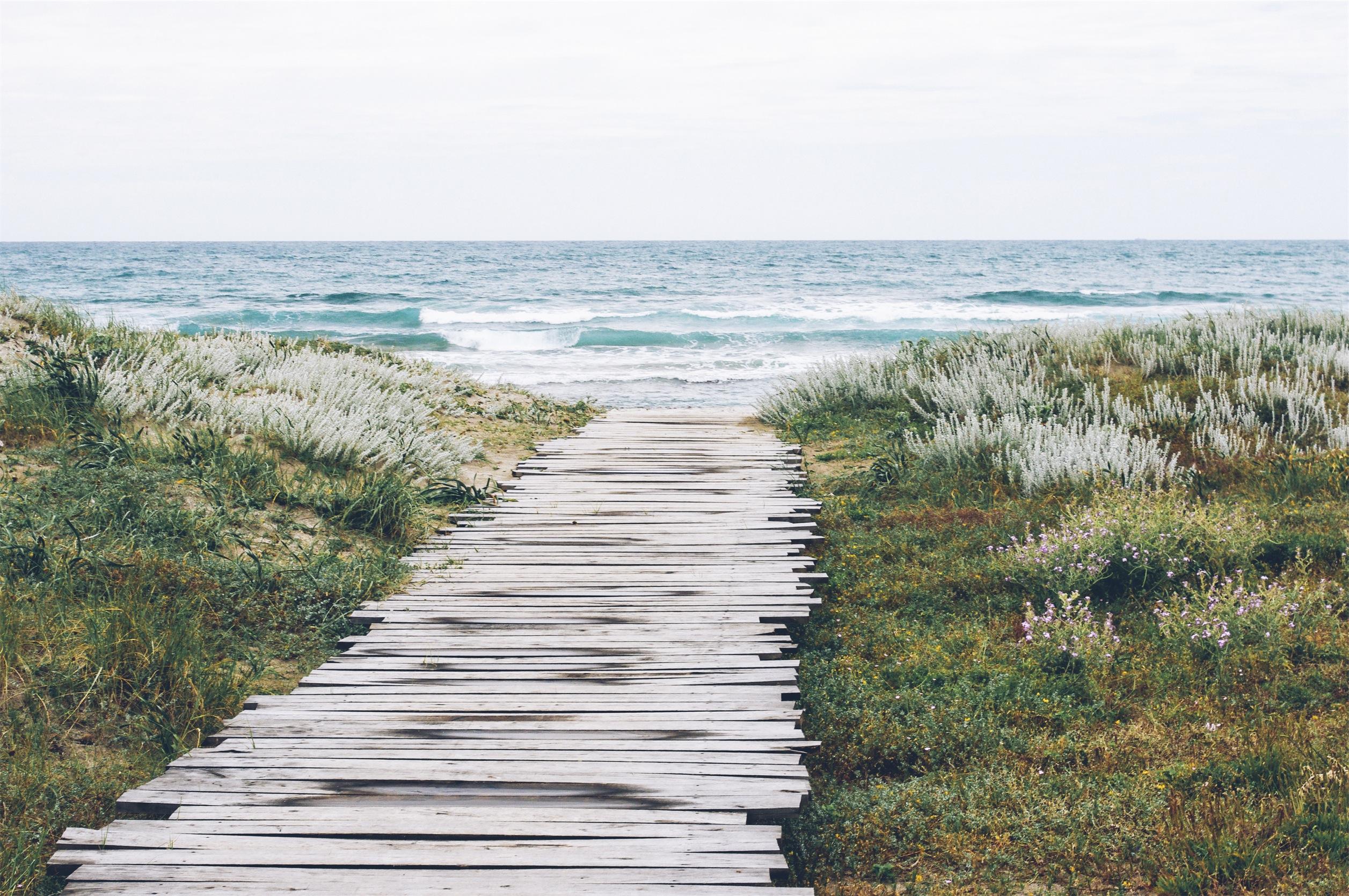 Nine Disciplines of a Steward Leader | The Steward's Journey